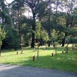 1 Bělský les - zeleň