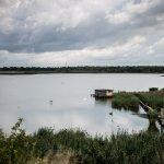 KAB_0989_1920px-Heřmanický rybník