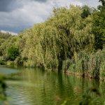 KAB_1021_1920px-Heřmanický rybník