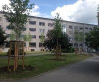 ZELENA_OSA_VITKOVIC_256_13-06-2014