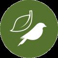 Ikona kategorie Příroda a biodiverzita