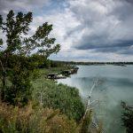 Heřmanický rybník