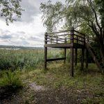 KAB_1027_1920px-Heřmanický rybník