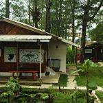 Záchranné a rehabilitační centrum The Kukang Rescue Program - kopie