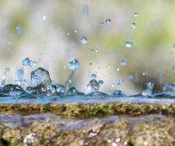 svetovy-den-vody-prispevek